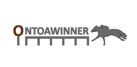 Find Out More About Racehorse Ownership With Onto A Winner